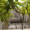 Palermo PALAZZO CATTOLICA